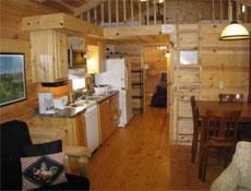 western-nc-log-cabins-offthemap7