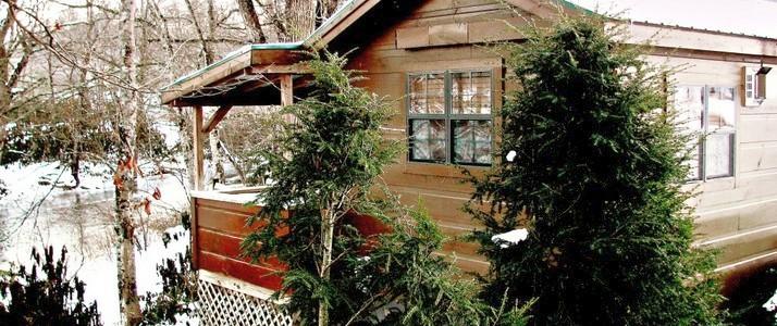 Mountain Summer Log Cabin Profile.