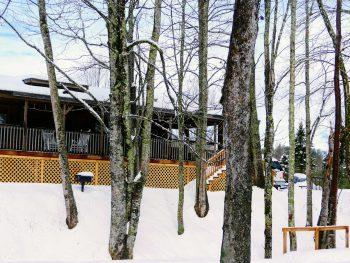 "Permalink to: ""Mountain River"" Log Cabin"