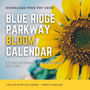 Blue Ridge Parkway Bloom Calendar