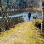 Linville River Log Cabins Pet Friendly